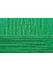 Пряжа Пехорка Цветное кружево 480 (Яр.зелень)