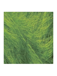Пряжа Alize MOHAIR CLASSIC 210 (зеленная трава)